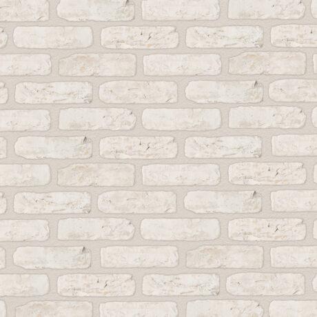 CAMTECH White Rustica