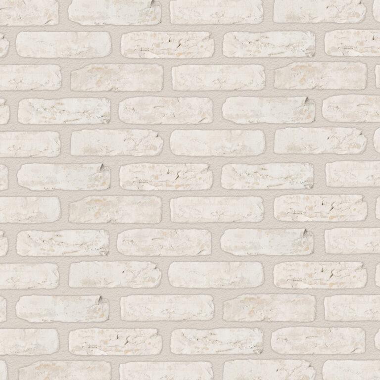 CAMTECH-White-Rustica.jpg